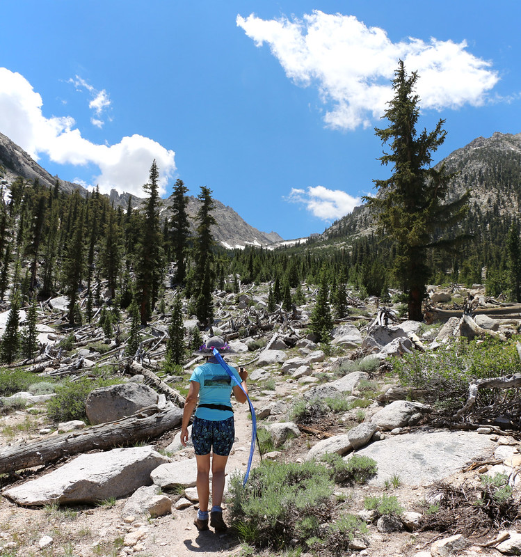 The Robinson Lake Trail was faint but followable, as it is relatively untraveled