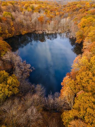 Secret Pond II
