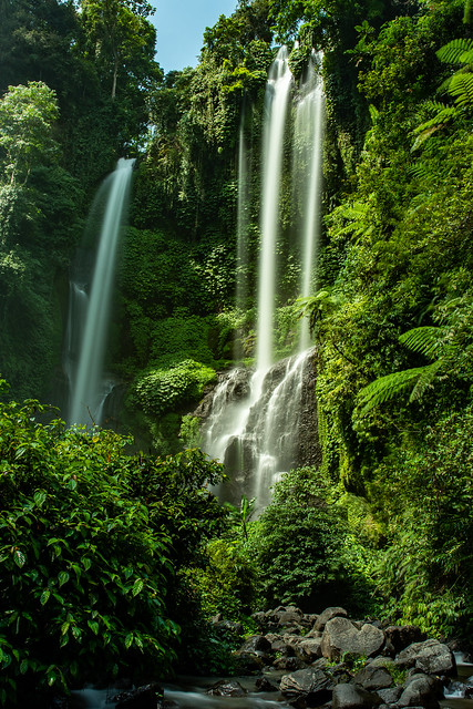 Twin waterfalls crashing  down the cliff in lush tropical jungle vegetation