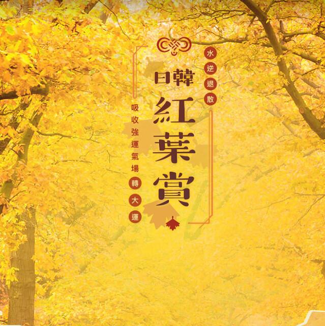 日韓楓葉紅