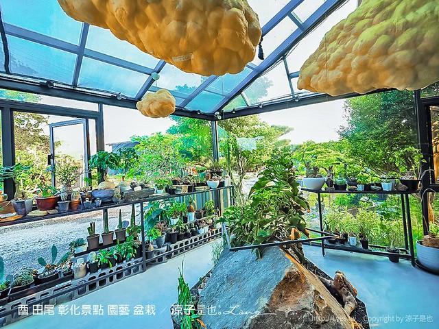 酉 Succulent & Artwork