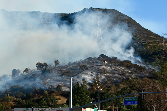 Hollywood Hills Brush Fire #BarhamFire