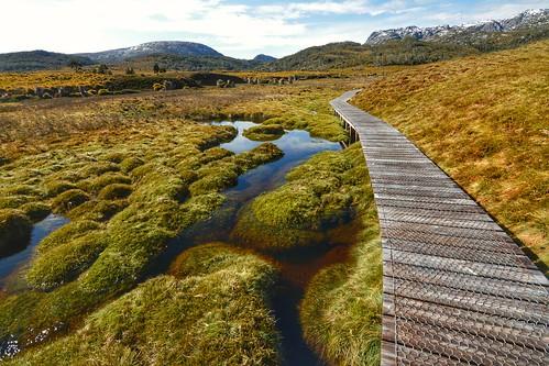 Romney Creek, Cradle Valley, Tasmania