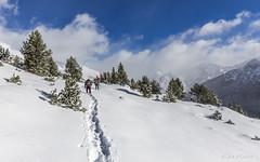 Camí de l'Estany del Querol, Andorra