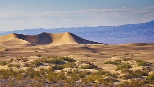 Death valley, Sand dunes