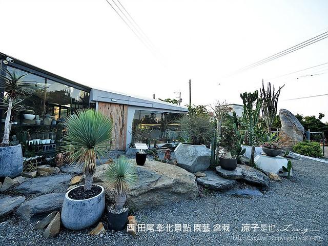 酉 田尾 彰化景點 園藝 盆栽