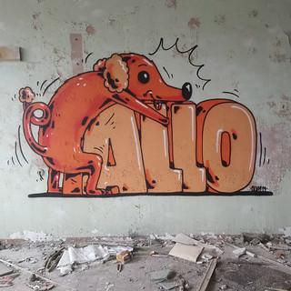 Pallo&Bad dog
