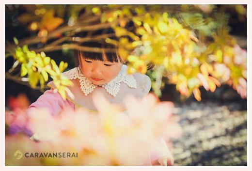 紅葉と女の子 古民家でロケーション撮影 愛知県尾張旭市
