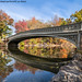 Bow Bridge (20191109-DSC08737-Edit)