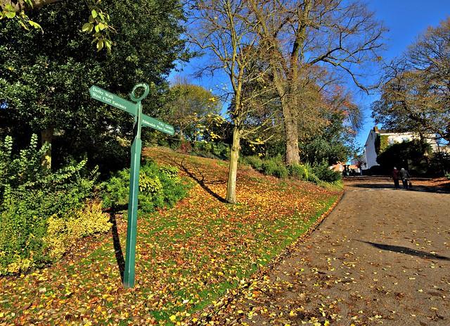 Golden Avenham Park in Preston
