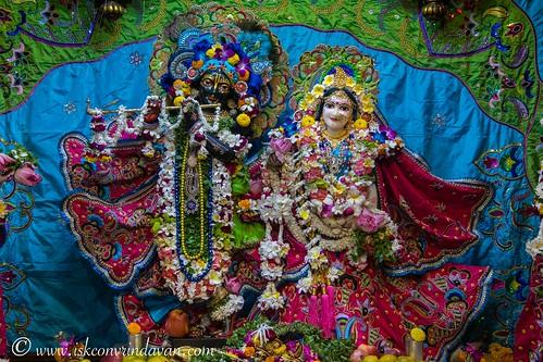 ISKCON Vrindavan Deity Darshan 11 Nov 2019