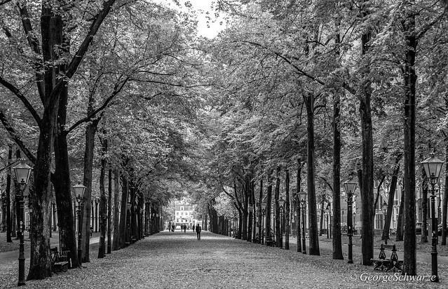 den Haag Lange voorhout