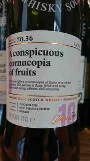 70.36 - A conspicuous cornucopia of fruits