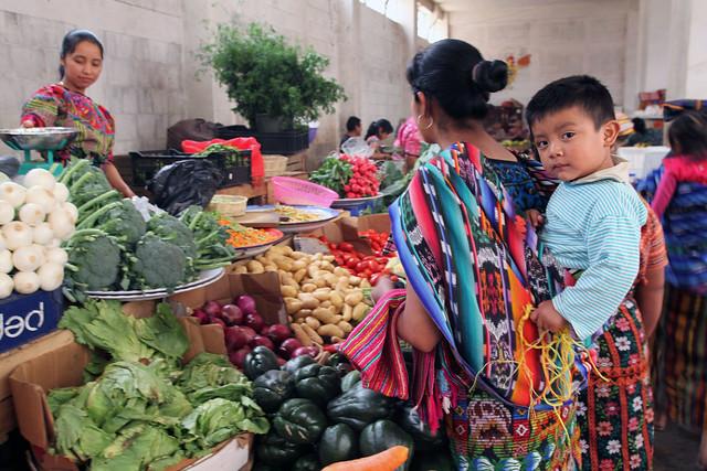 Paranorama Seguridad Alimentaria y Nutricional 2019