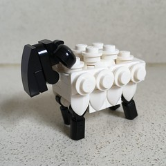 Sheep mini build