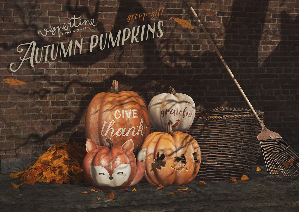 autumnal pumpkins - group gift