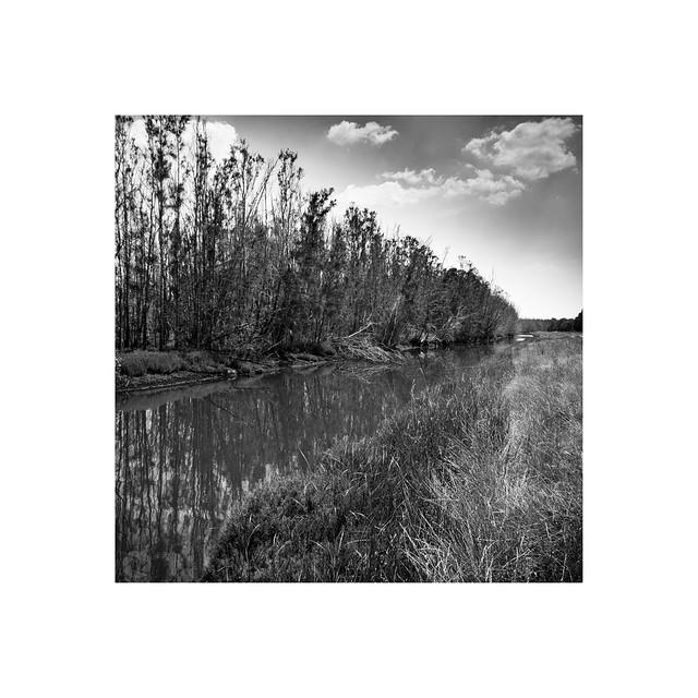 Hunter Wetlands National Park - Tomago