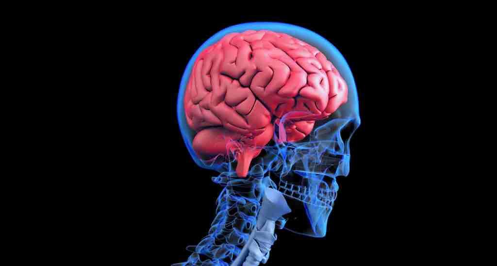 un-révepteur-lié-aux-humeurs-négatives-au-centre-du-cerveau