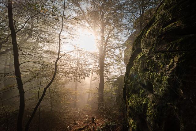 Exploring the Elbe Sandstone Mountains