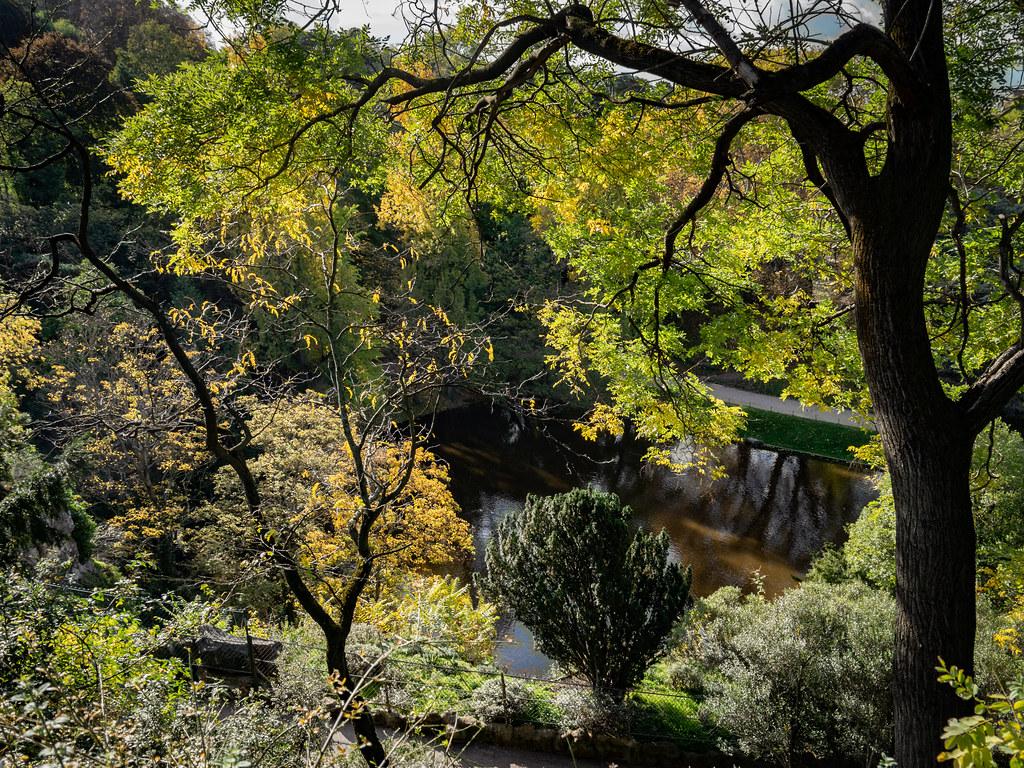 Lumières d'automne sur les Buttes Chaumont... 49049533687_db7763a8ea_b