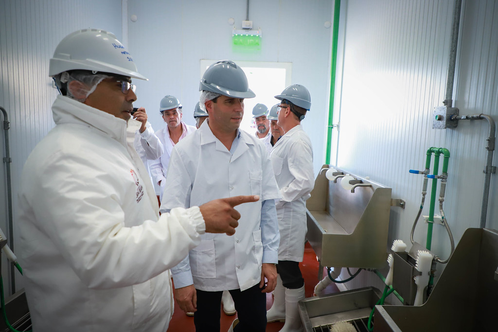 2019-11-11 PRENSA: Entrega a Productores Locales de Reproductores Bovinos Machos de las Razas Murray Grey – Aberdeen Angus, en el marco del Plan Toro