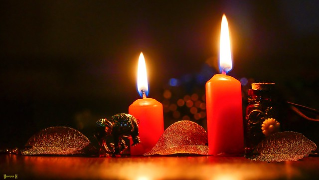 #Candles - 7693