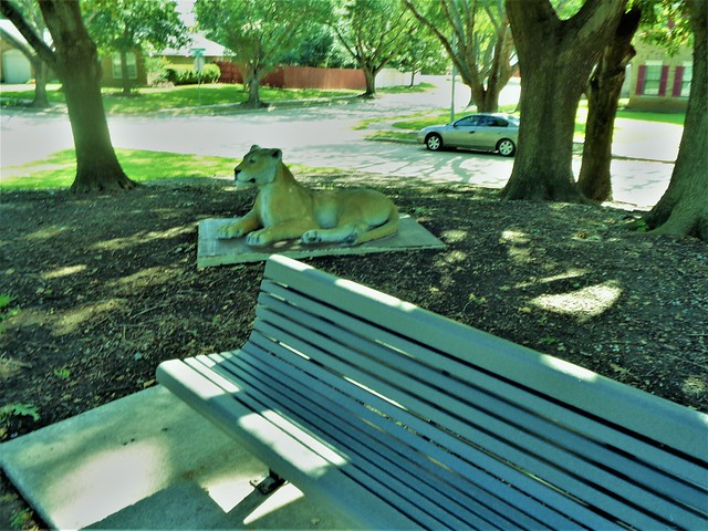 BENCH MONDAY-----LION IS SECURITY GUARD