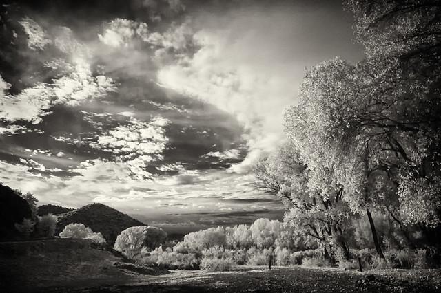 Near Bill Evens Lake, New Mexico