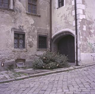 Bratislava Trees (new edit)