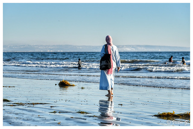 Coronado Beach, San Diego, California -29