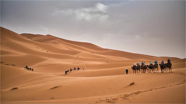 Dunes of Sahara I, Marocco - April 2019
