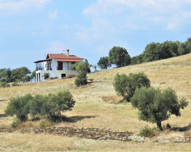 Villa and Olive Trees - Vatopedi