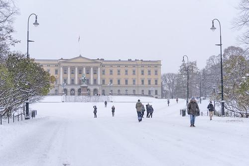 Snowing in Oslo, Norway