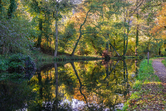 Monmouthshire & Brecon Canal, Mamhilad 0912