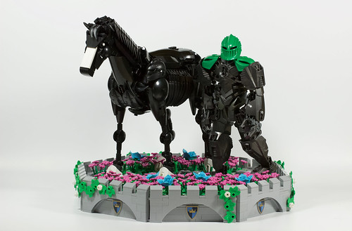 Maruāpōtoa(knight) and Ekōru(horse)