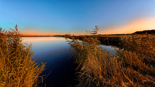nature reflection lake water sunset sky landscape reedgrassfamily outdoors blue scenics dusk tranquilscene summer river marsh beautyinnature sunlight swamp pond 857
