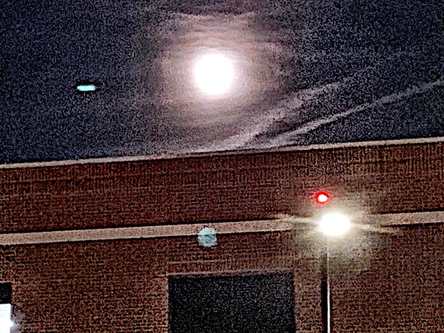 2019 315/365 11/11/2019 MONDAY - M O O N, that spells moon