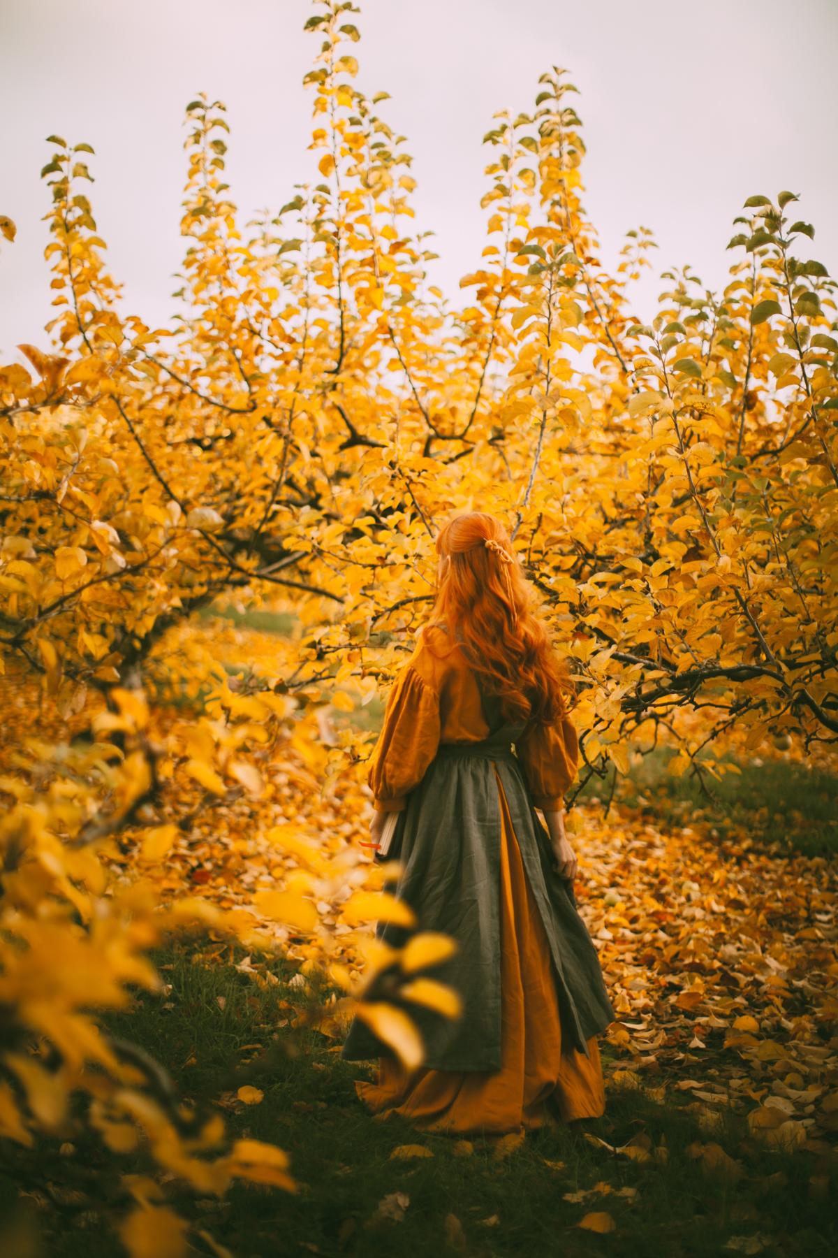 yelloworchard