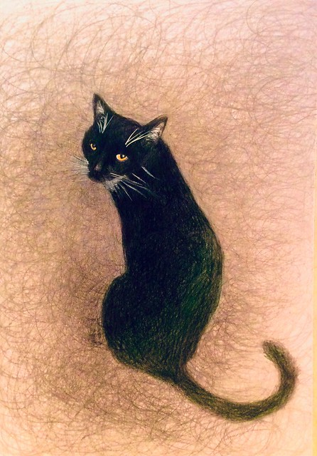 Drawing of Jenkins. Coloured pencil drawing on card by jmsw. Last stage of 3.