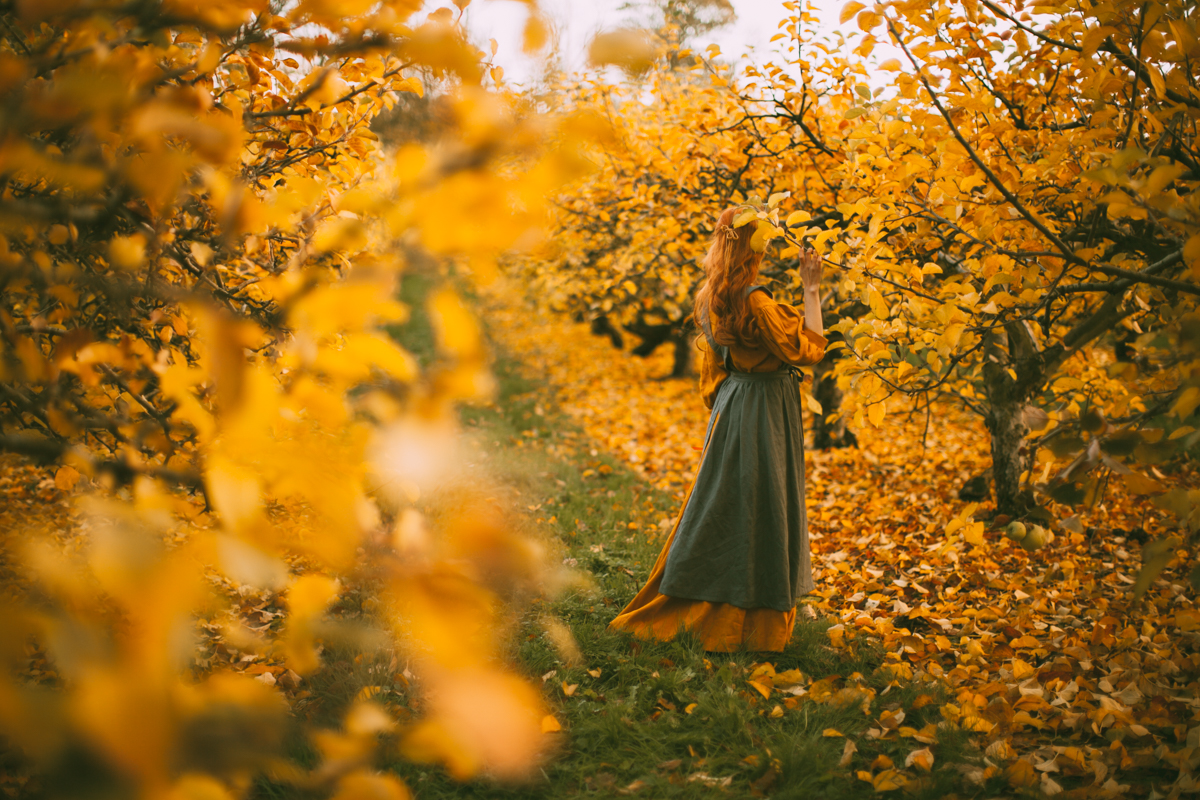 yelloworchard-25