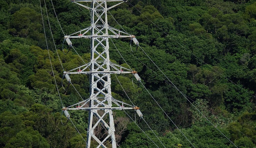 高壓電塔上的礙子(白色的長條環狀物)。攝影:陳文姿