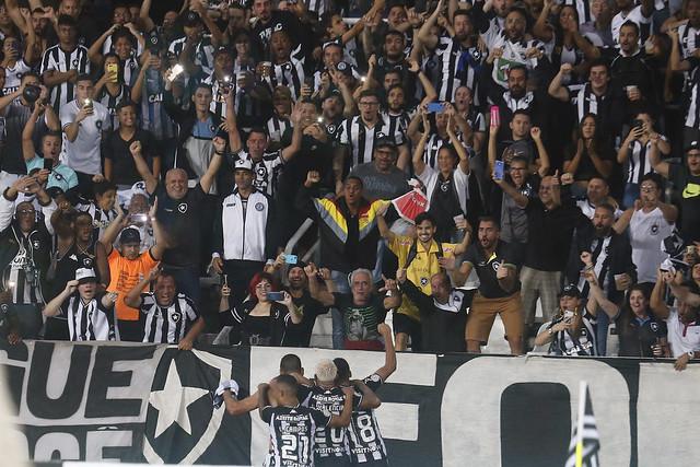 Botafogo x Avaí - 11/11/2019