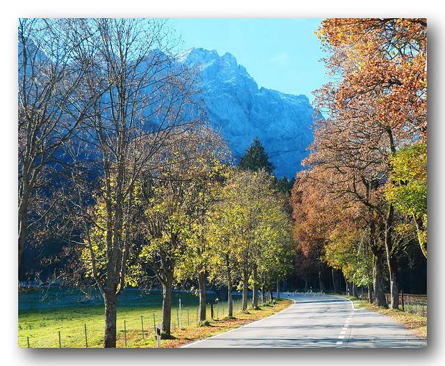 Beautiful road.