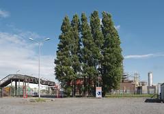 Rotterdam Vondelingenplaat
