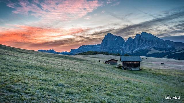 Dolomiti - Alpe di Siusi all'alba