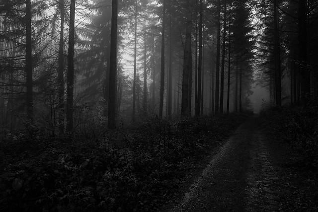 The misty season