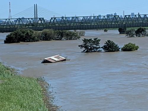 台風19号で秋ヶ瀬橋、荒川氾濫しそう