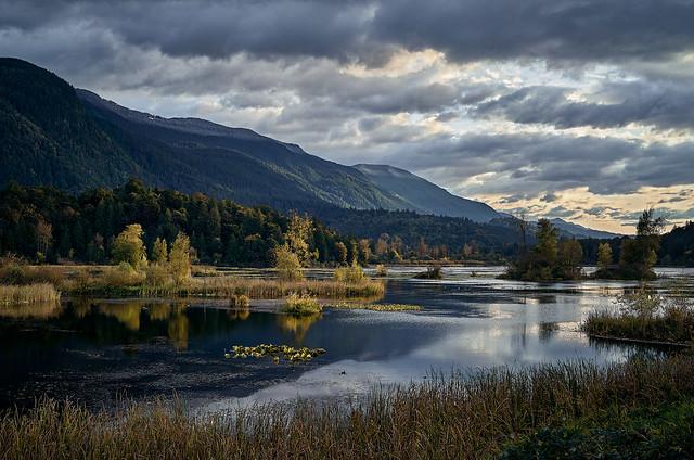 Cheam Wetlands