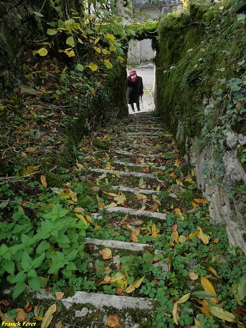 Ancien escalier qui mène au jardin en terrasse - Salins les Bains - Jura