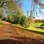 Autumn colour at Avenham Park, Preston